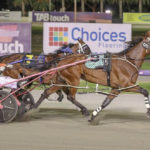 The Last Word – Westral Mares Classic Night thumbnail