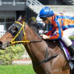 Parnham Excited By Kay Cee Return thumbnail