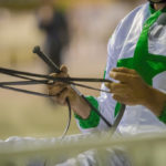 RWWA Stewards Advice to Industry – Whip Rule thumbnail