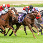 An Early Look – Prince Of Wales Stakes Day thumbnail