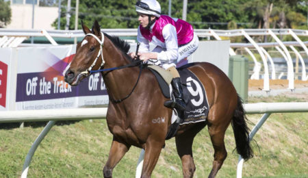 A History Of The Belmont Guineas thumbnail