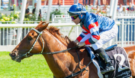 Cup Night On Track To Return thumbnail