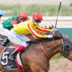McAuliffe: Kingston Town A Target Race For Gatting thumbnail