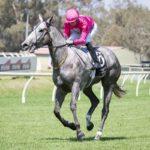 Fabergino's Melbourne Plans Uncertain thumbnail