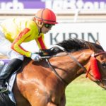 Solaia's Stocks Rise After Ascot Demolition thumbnail