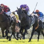 Falcon Crest Lures McLeod Back To Racing thumbnail