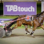 Owners Only – Win A Westbred Competition thumbnail
