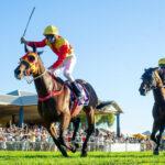 Reynold's Big Shot At Eurythmic Stakes thumbnail