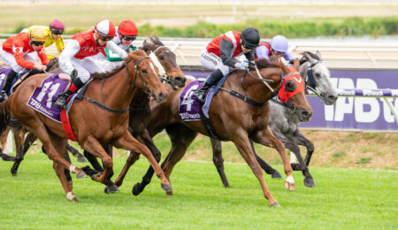Valour Road On Trial In Hyperion Stakes thumbnail