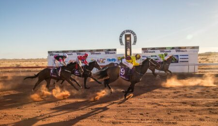 Animals to stay SAFE with help from the Nor West Jockey Club and Community TAB thumbnail