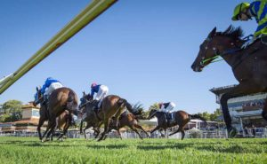 Perth Stakes and Grandstand Cup thumbnail