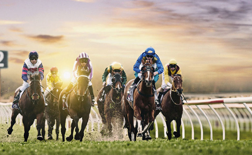 TABtouch Mount Barker Cup thumbnail