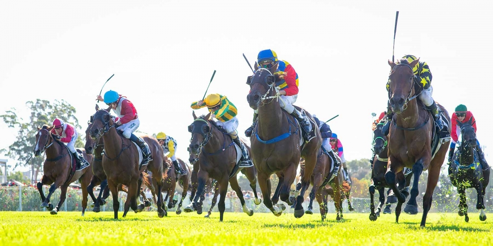Willis Out To End Peters Dominance In WA Oaks thumbnail
