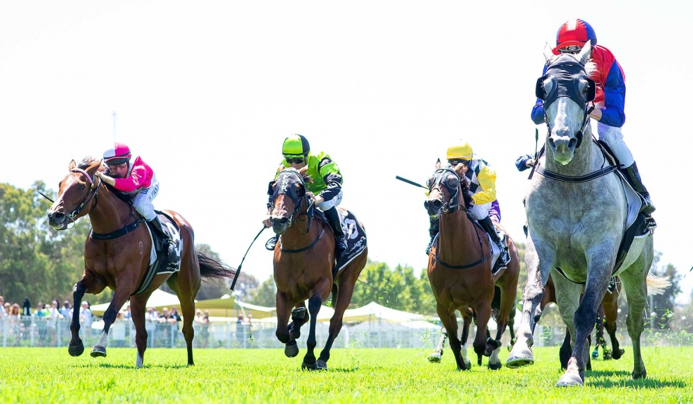 Pearce Brothers Out To End Big Week On A Memorable High thumbnail