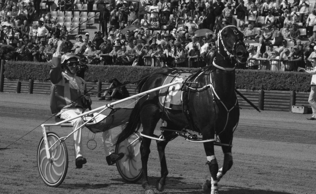Harness Trainers/Drivers Nominee: Gary Hall Jnr thumbnail