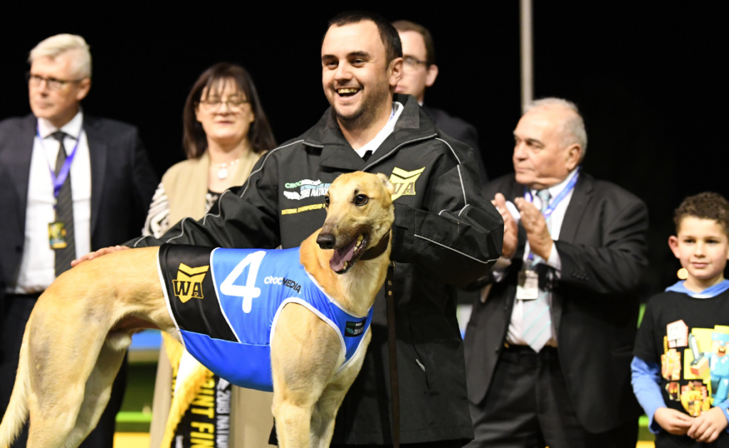 West On Augie wins top greyhound award thumbnail