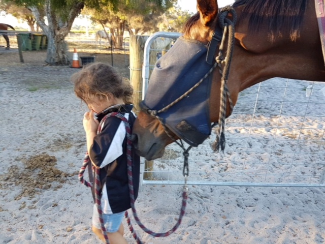 Equine Athletes Impacting After Retirement thumbnail