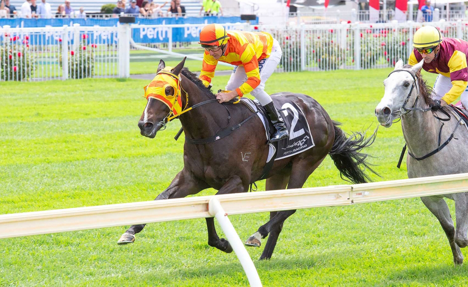 Harrison Has Perth Stakes Doubt With Jericho Missile thumbnail