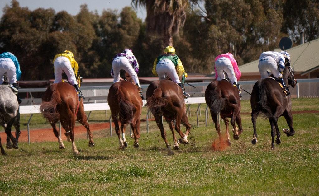 ANZAC Day Race Day thumbnail