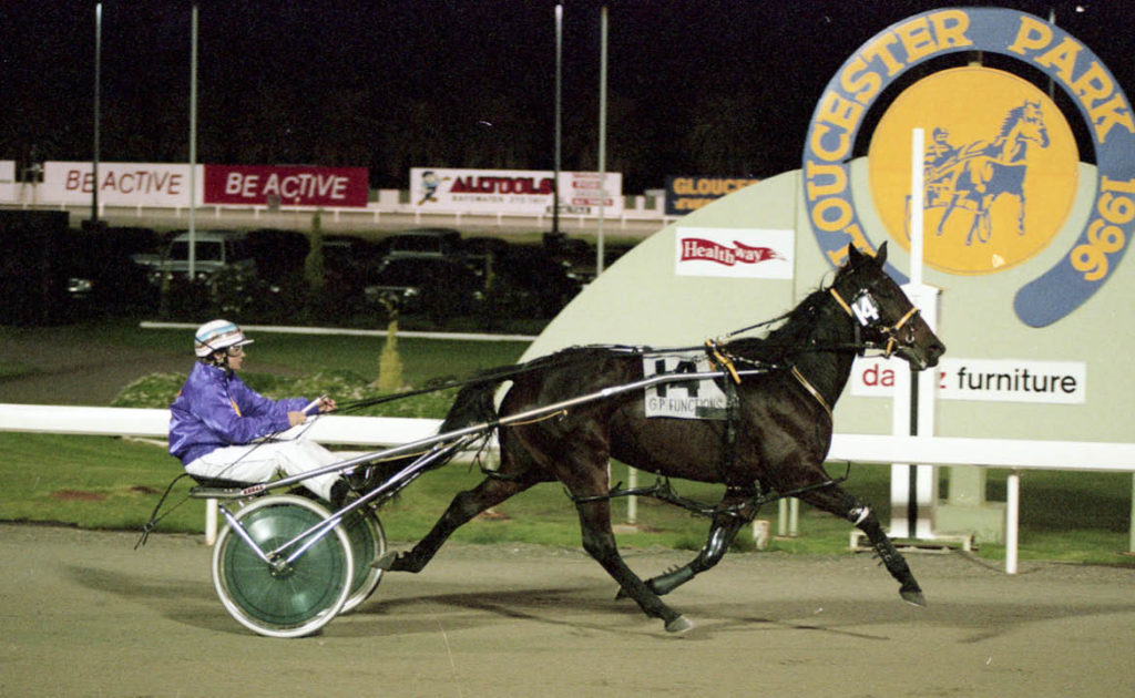 Harness Horse Nominee: Norms Daughter thumbnail