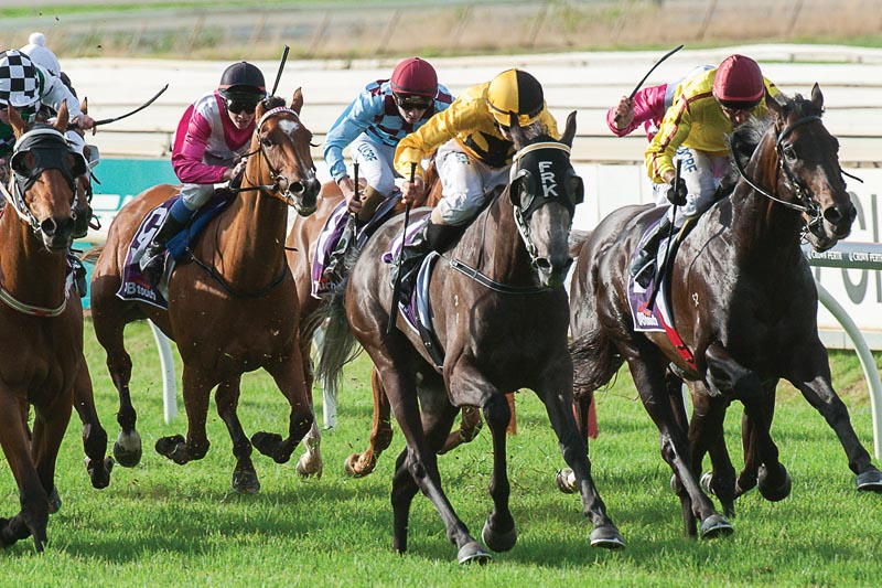 Kersley Praises Strong Stayers