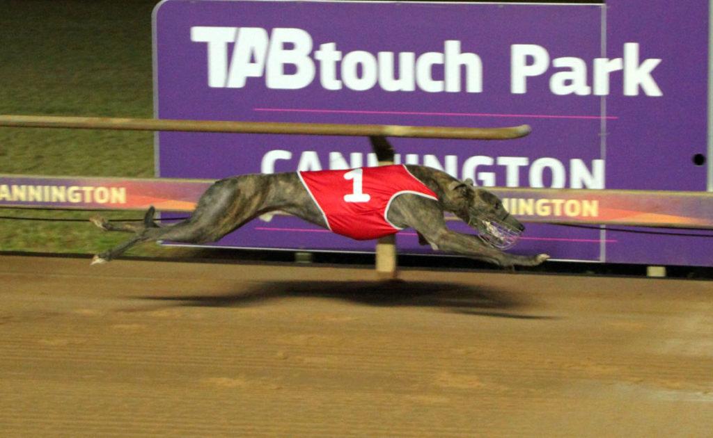 WA Sprint Heats run deep! thumbnail