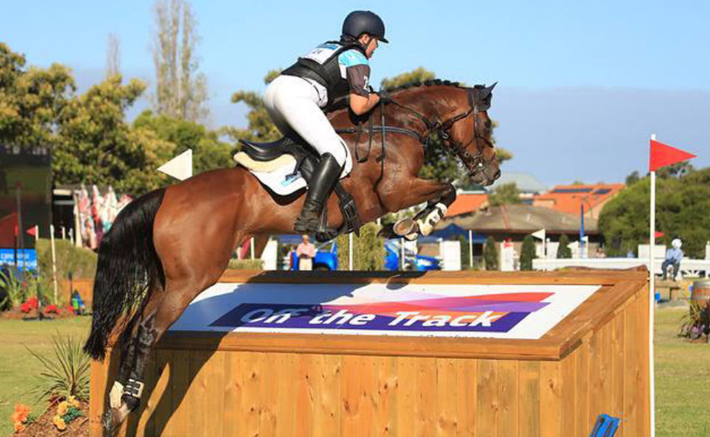 Video: Standardbreds at Eventing In The Park thumbnail