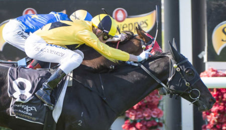 Owner Delights In Northam Cup Triumph thumbnail