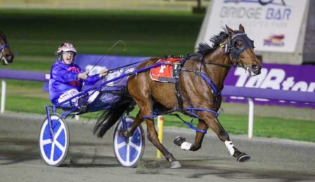 Ocean Ridge Out Of Pacing Cup thumbnail