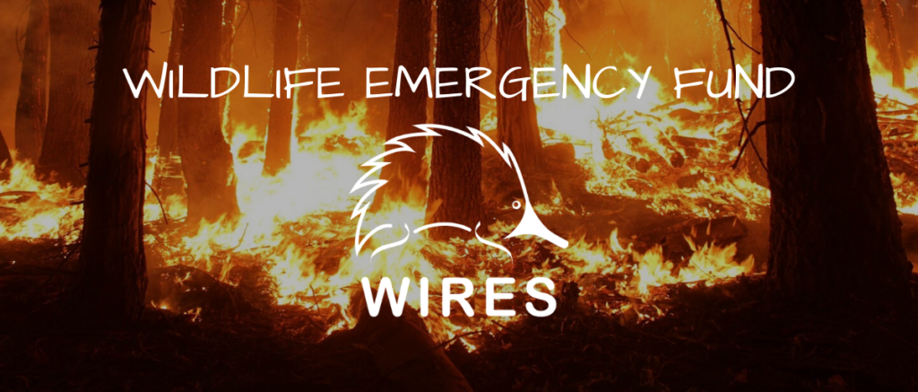 Community TAB to Donate to WIRES Emergency Fund thumbnail