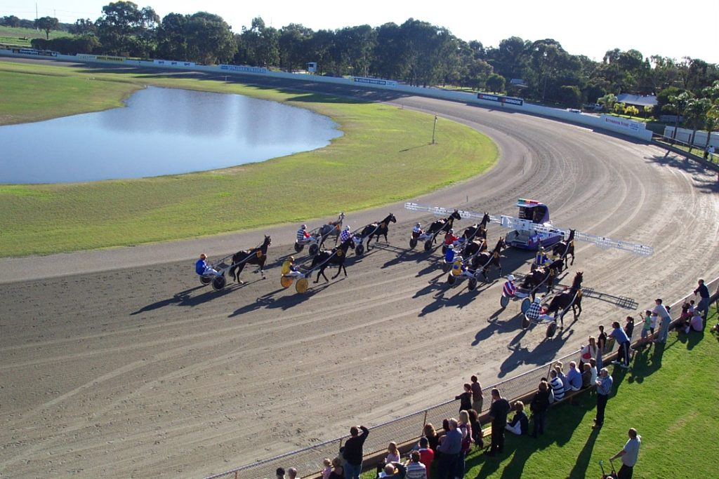 Pinjarra Harness Racing and Community TAB to host Team Teal Fundraiser thumbnail