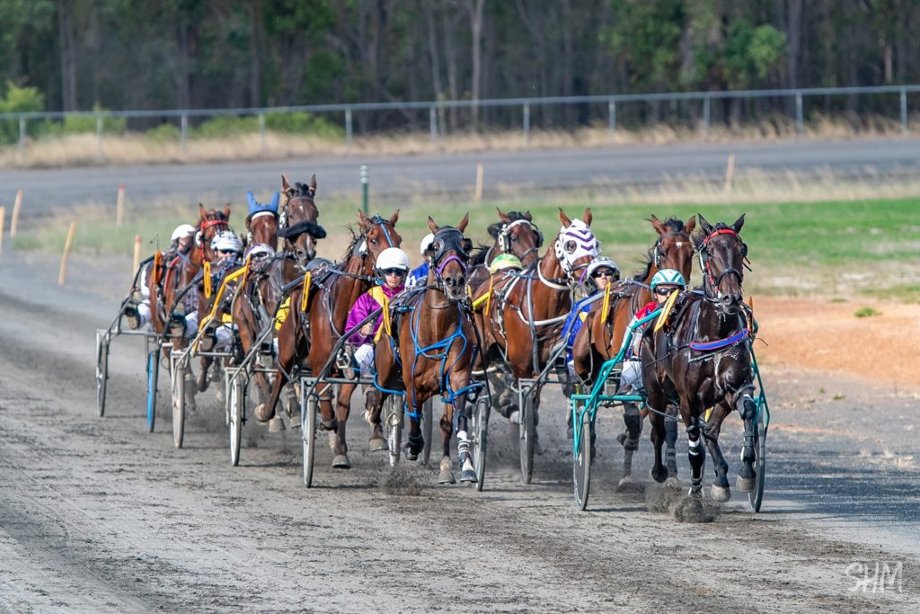 Bridgetown Harness Racing Club and Community TAB to fundraise for local P&C thumbnail