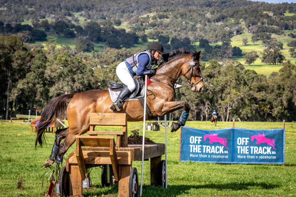 RWWA Launches Website Dedicated to Retired Racehorses thumbnail