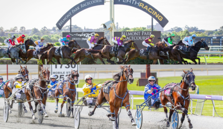 Social Media Coverage to Resume from Belmont Park and Gloucester Park thumbnail