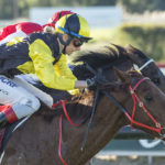 Material Man To Revive Belmont Sprint Memories thumbnail