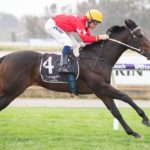First Law Stamps Guineas Credentials thumbnail