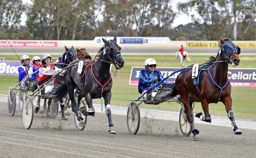 Ferguson Aiming For The Stars With Trotters Cup Winner thumbnail