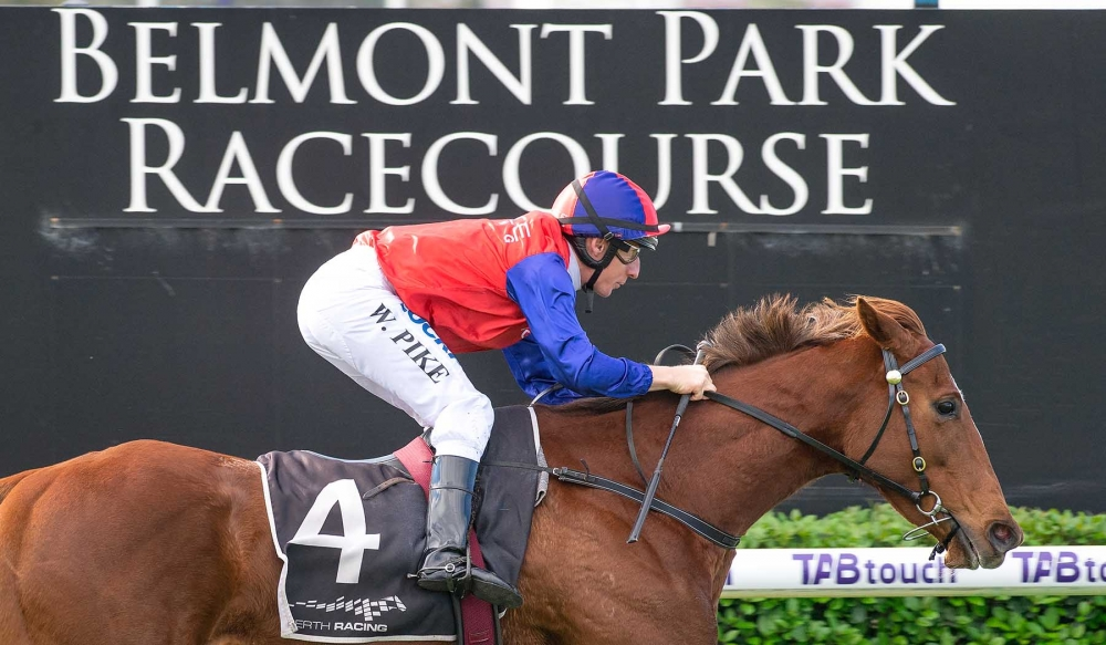 Essential Spice Can Handle Weight Rise Says Pearce thumbnail