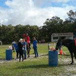 HorsePower Denmark Participant receives Community TAB Scholarship thumbnail