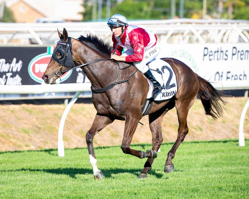 Pike Claims Melbourne Cup Mount thumbnail
