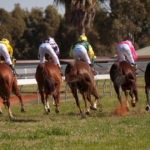 Coolgardie Racing Club and Community TAB to fundraise for local community groups thumbnail