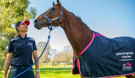 RWWA Launches WA Horse Passport thumbnail