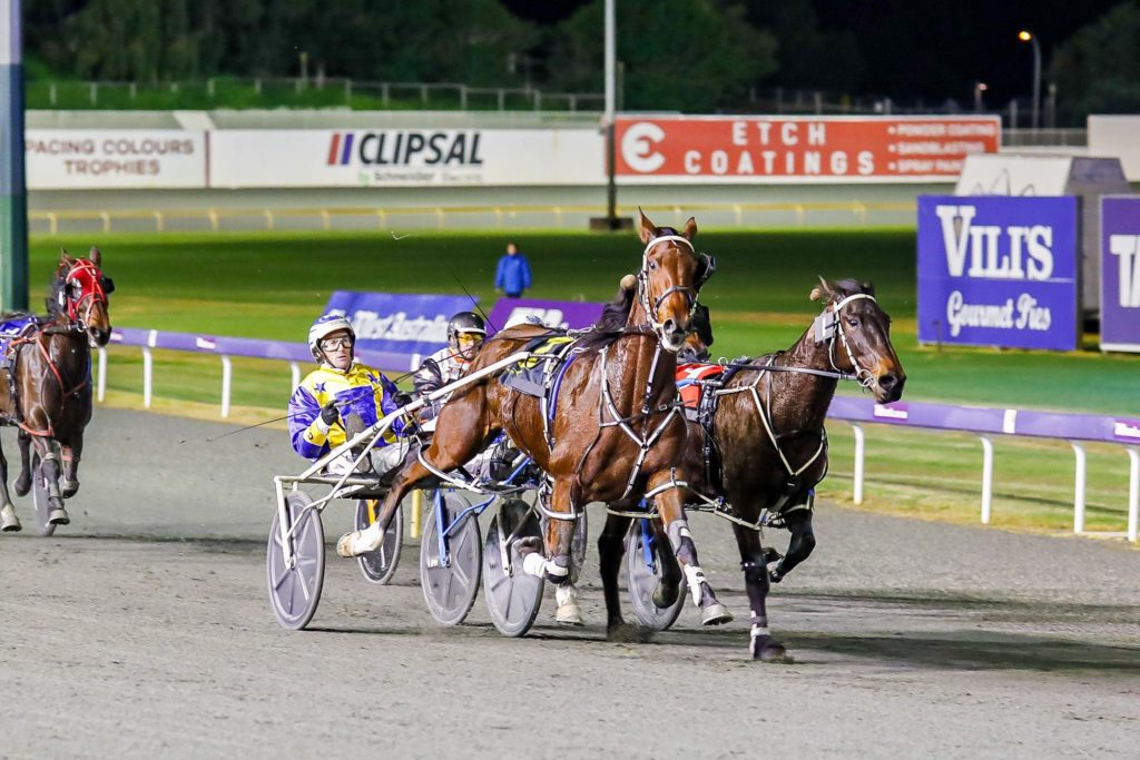"Lochinvar Art ""95 per cent"" chance for Pacing Cups thumbnail"