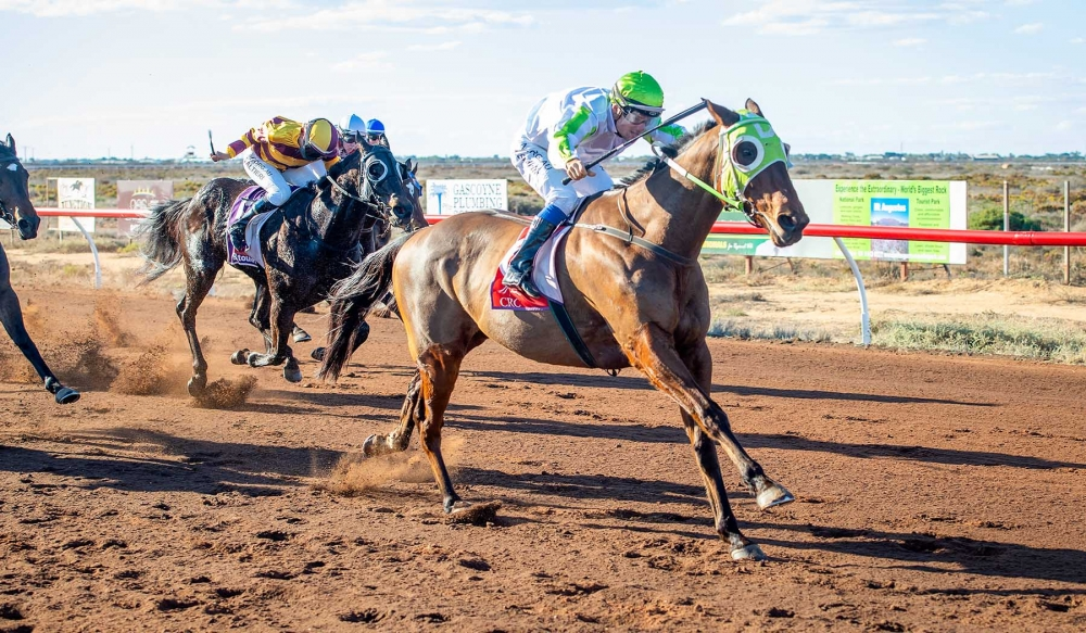 Moora Cup Hopeful Staves Off Retirement Plans thumbnail