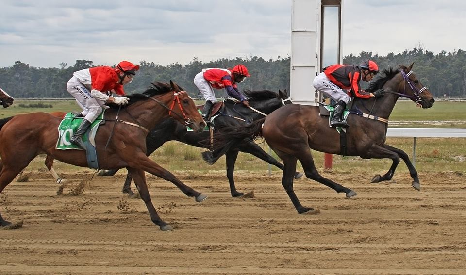 Collie Race Club and Community TAB to fundraise for local Pony Club thumbnail