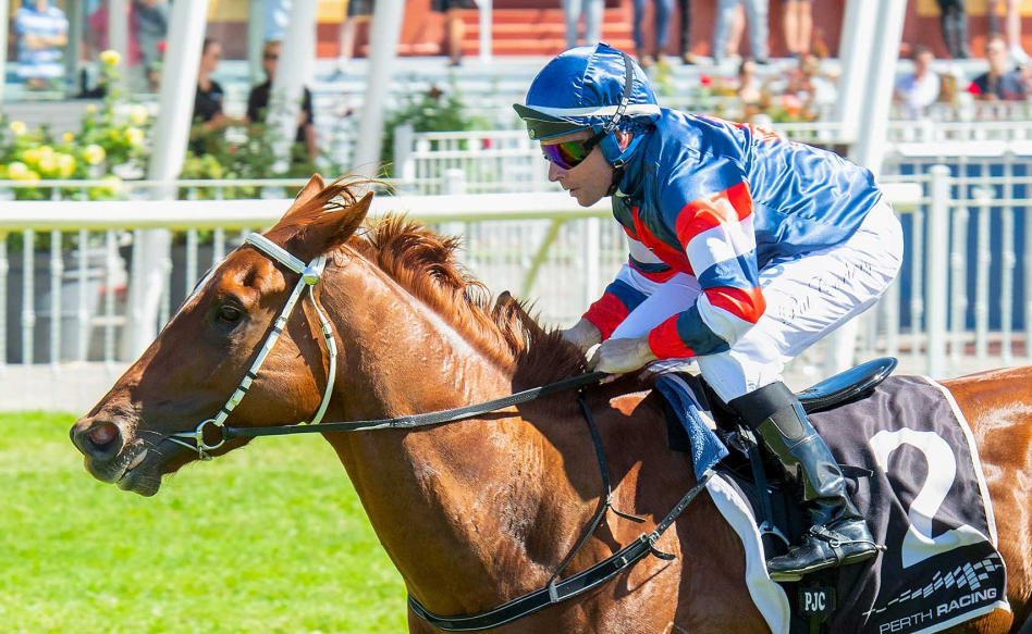 Wide Draw No Problem For Cup Night In Northerly Stakes Says Miller thumbnail
