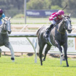Group 1 Plans Still Alive For Fabergino