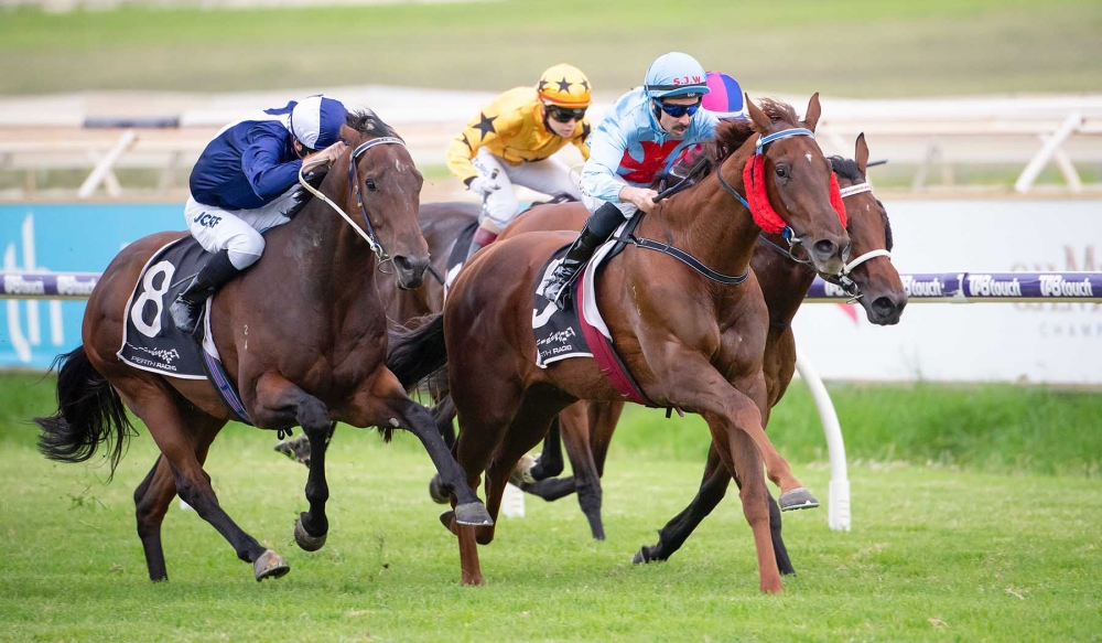 McGruddy's Hopes Of Railway Stakes Success thumbnail