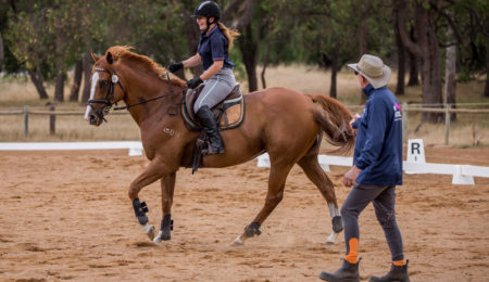 Off the Track WA and Equestrian WA Program Announced thumbnail
