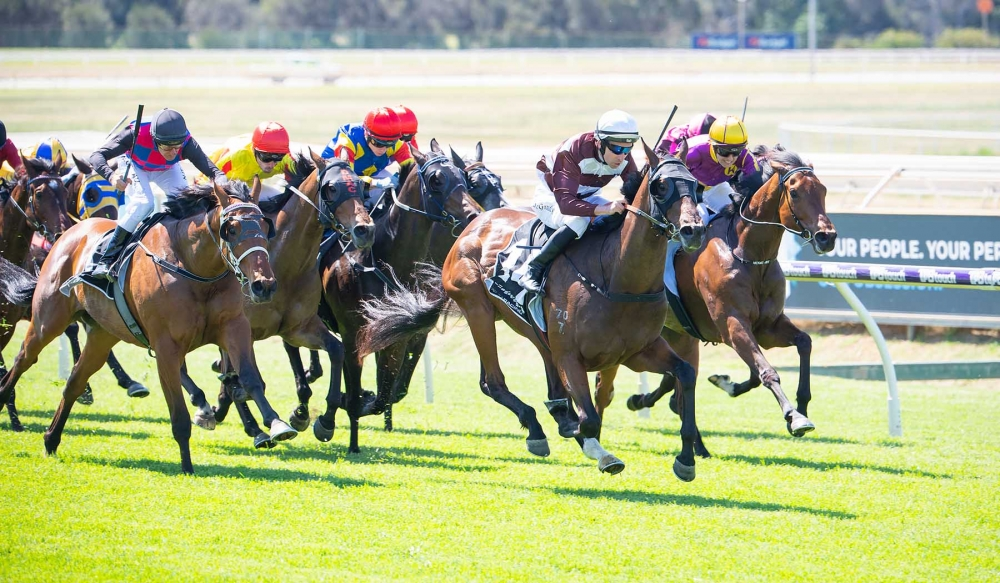 Perth Cup Looms For Em Tee Aye thumbnail